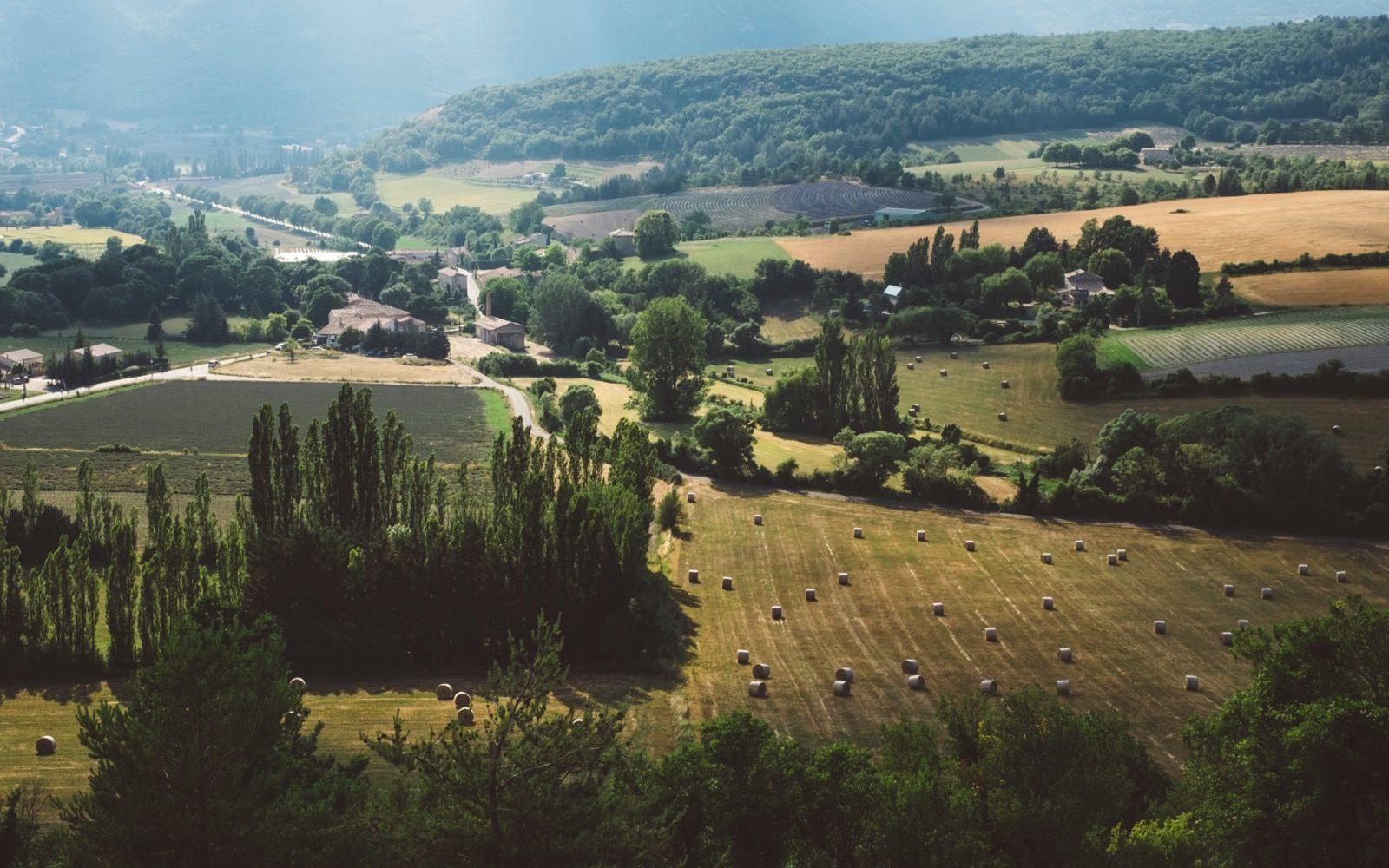Landwirtschaftliches Panorama